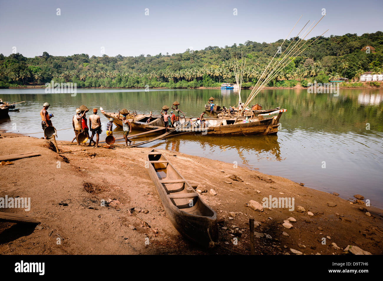 Labourers loading sand off a boat on the Mandovi River by the village Panchayat in Goa, India. - Stock Image