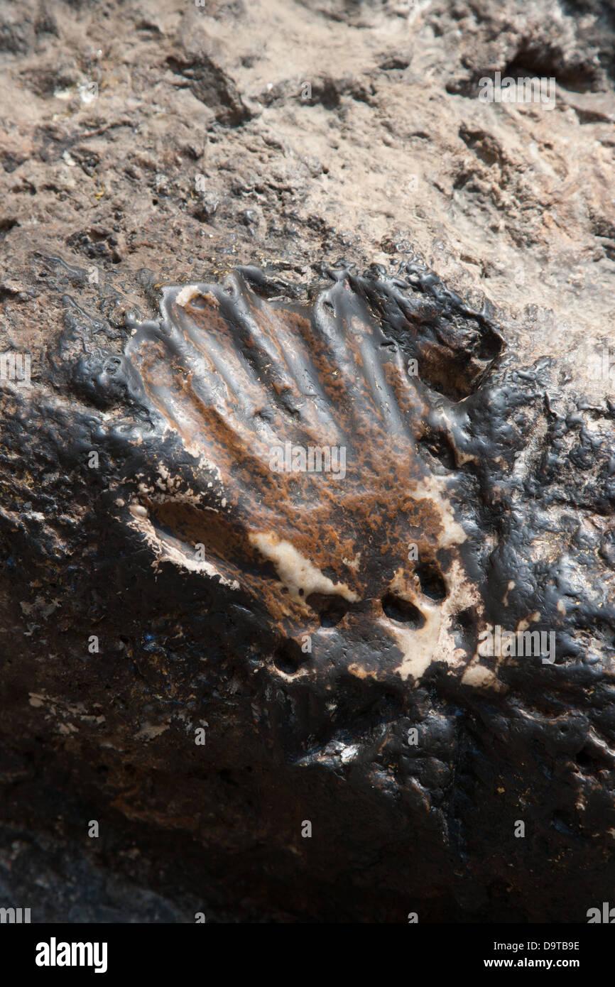 Hand print in stone at Padmasambhava's (Guru Rinpoche) Cave - Stock Image