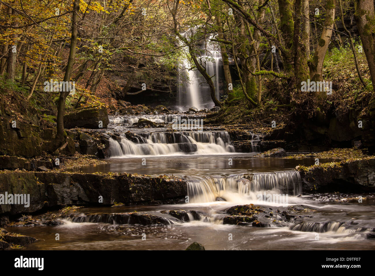 Gibsons Cave Waterfall, Bowlees, Teesdale, County Durham - Stock Image