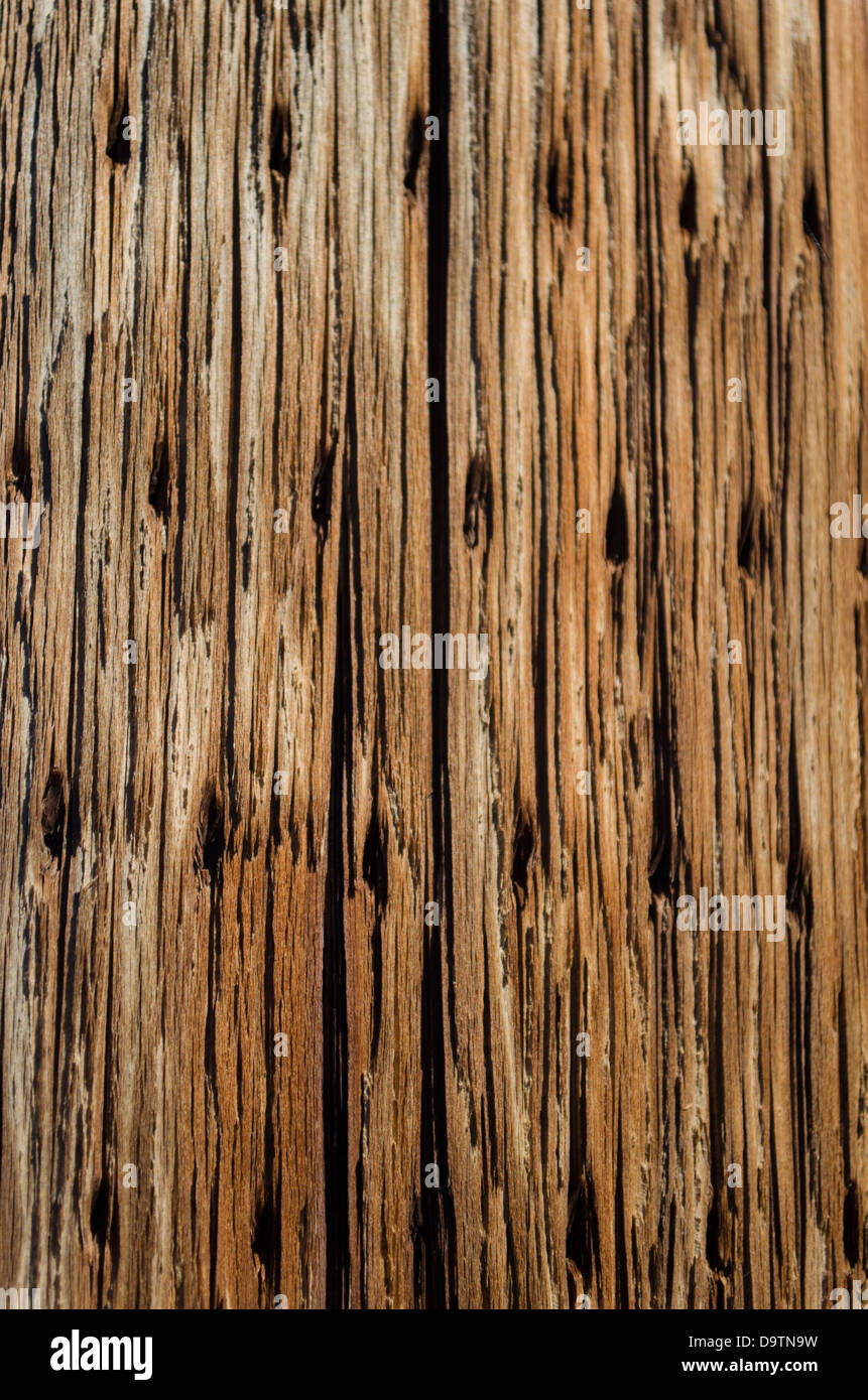 Wood Plank Background Old Panel Board Floor Abstract
