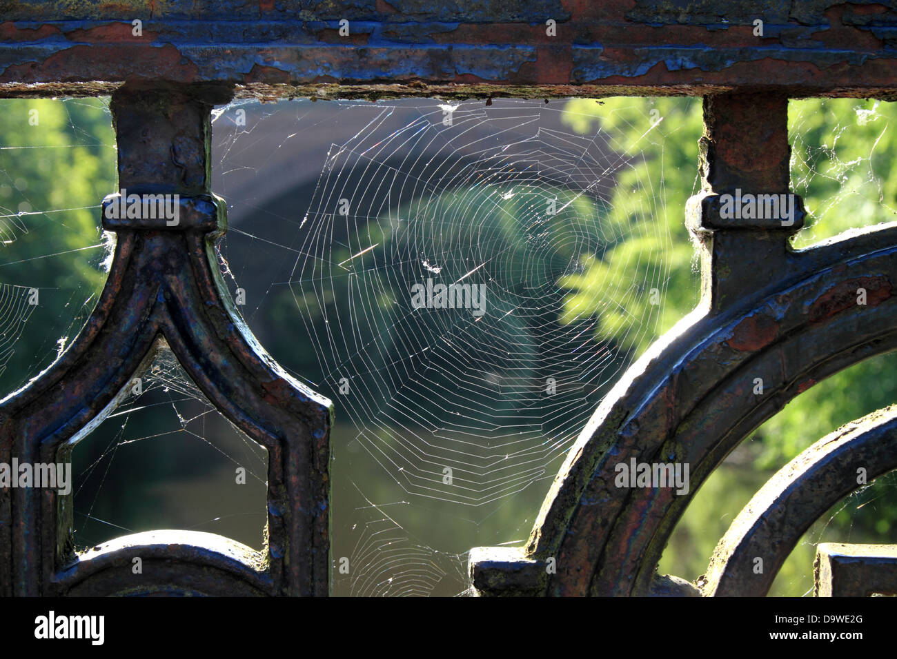 a spider web in an iron bridge fence with a backlit sunlight - Stock Image