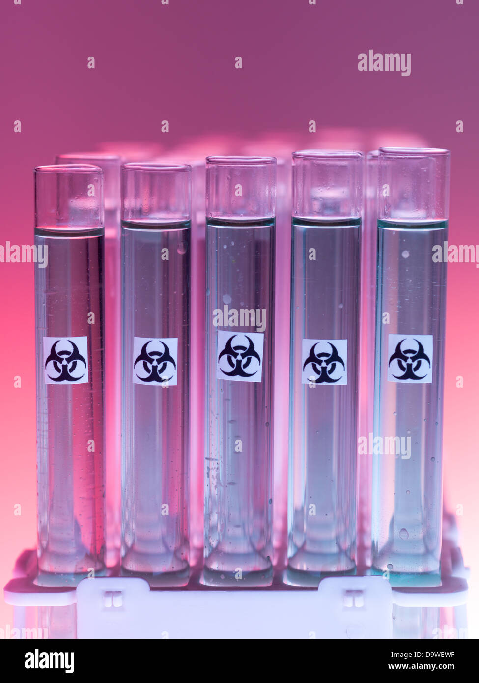 front view of experimental test tubes filled with transparent gray substance and marked as bio hazardous, against Stock Photo