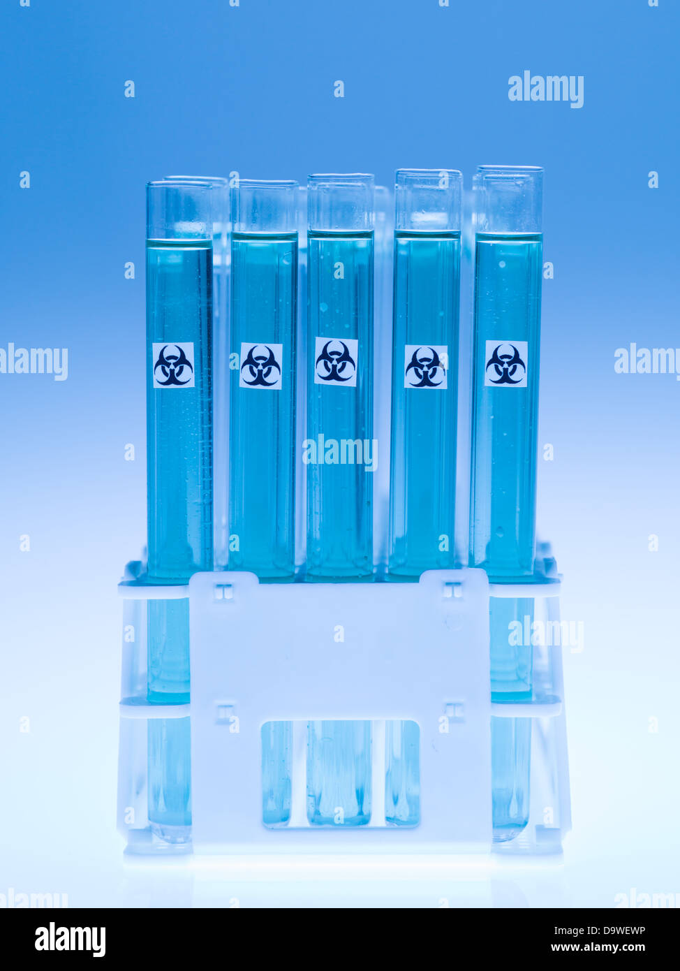 front view of experimental test tubes filled with transparent blue substance and marked as bio hazardous, against Stock Photo