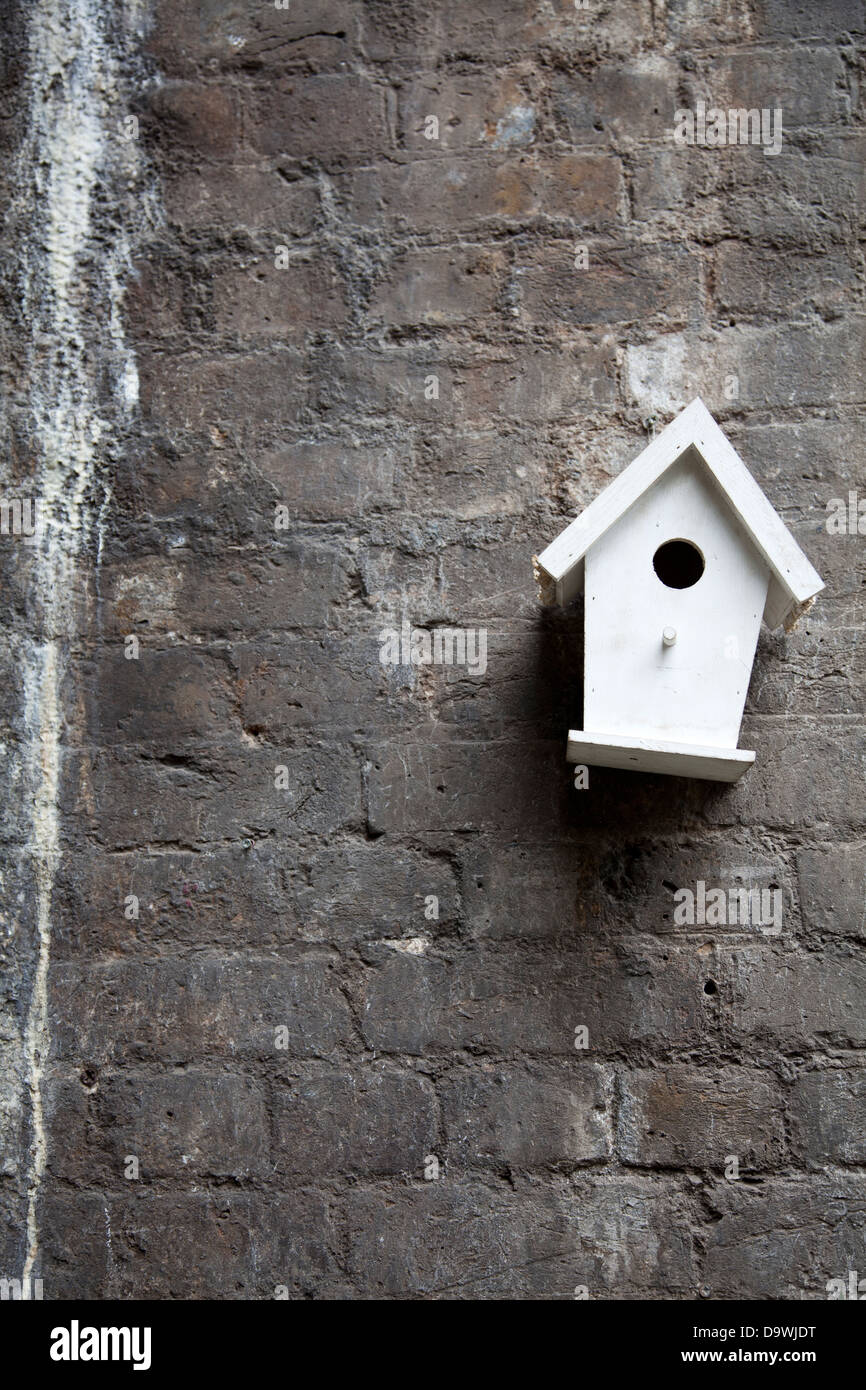 Grungy Wall with Tilting Birdhouse - Stock Image
