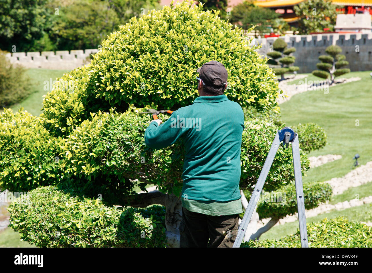 gardener gardening salou, catalonia, spain - Stock Image