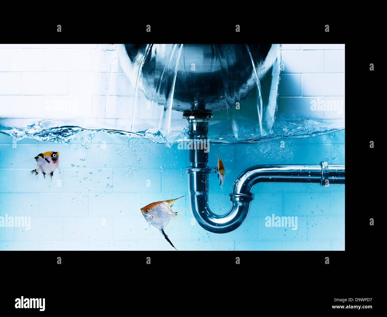 bathroom leak - Stock Image