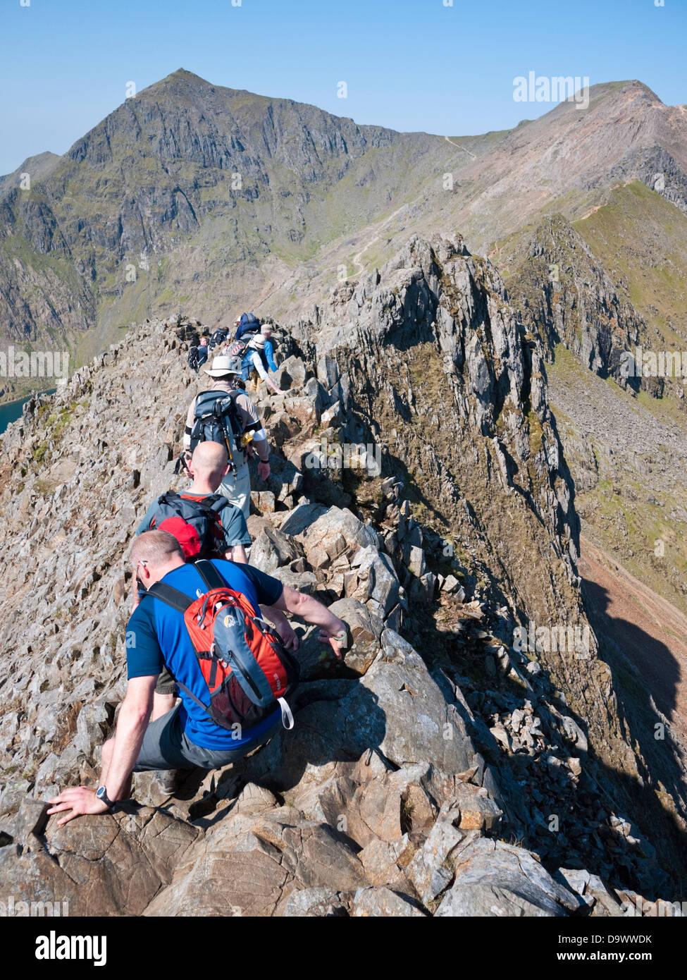 Scramblers tackle the knife edge of Crib Goch. Snowdon summit, Yr Wyddfa, rises left with Crib y Ddysgl (Garnedd - Stock Image