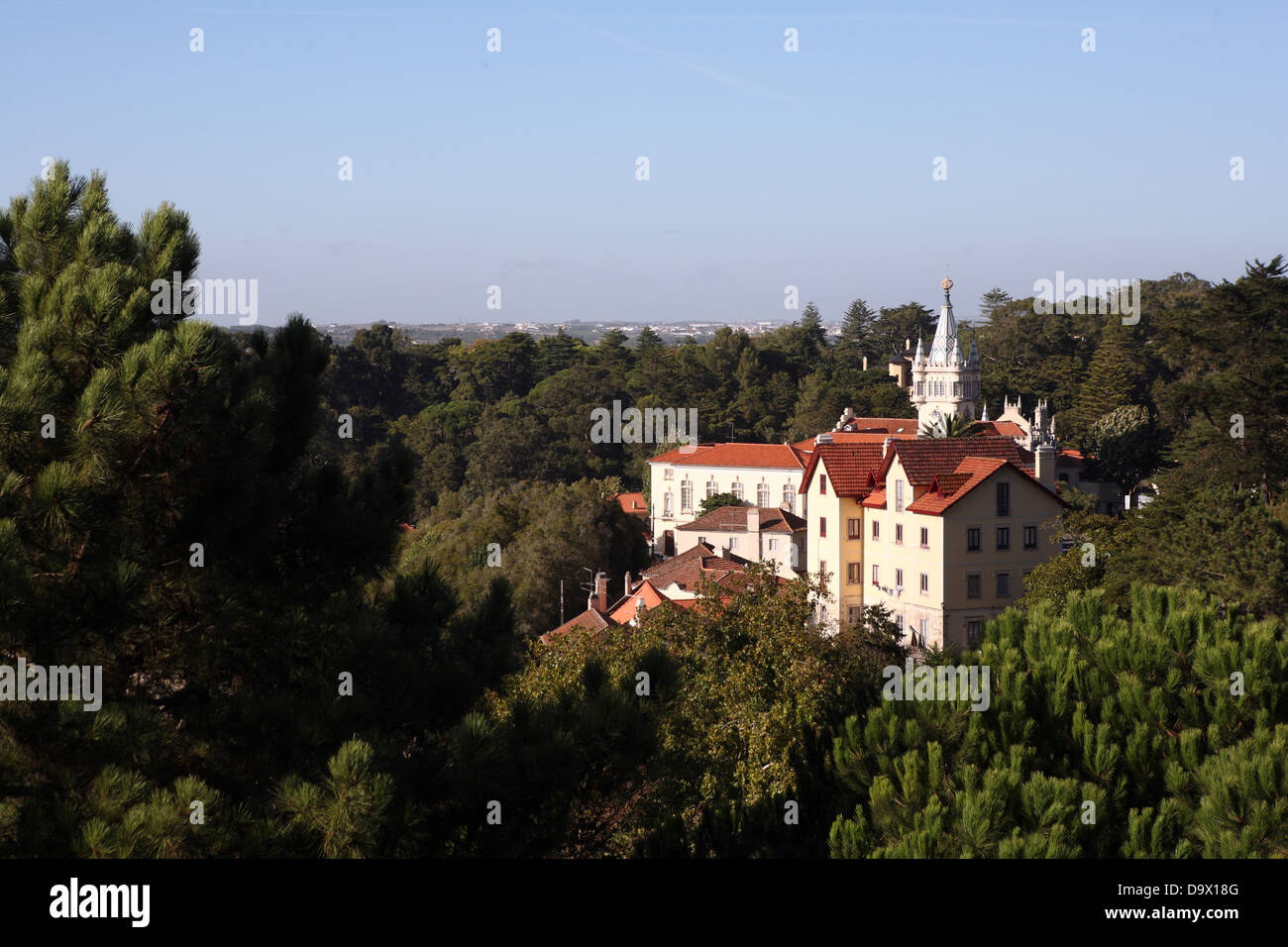 Palace woods Sintra Portugal - Stock Image