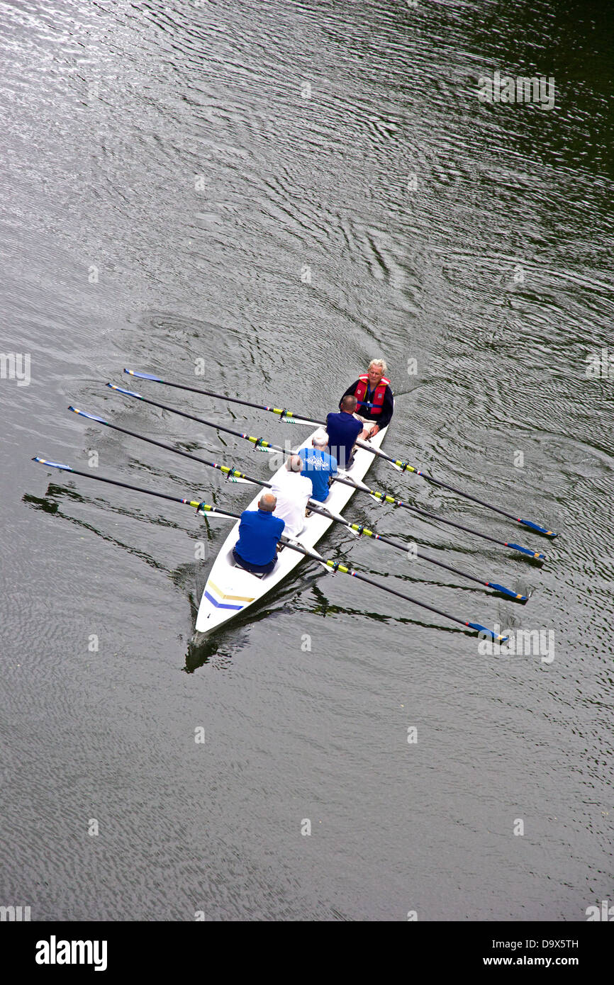 Senior men manning coxed four rowing boat on River Wear - Stock Image