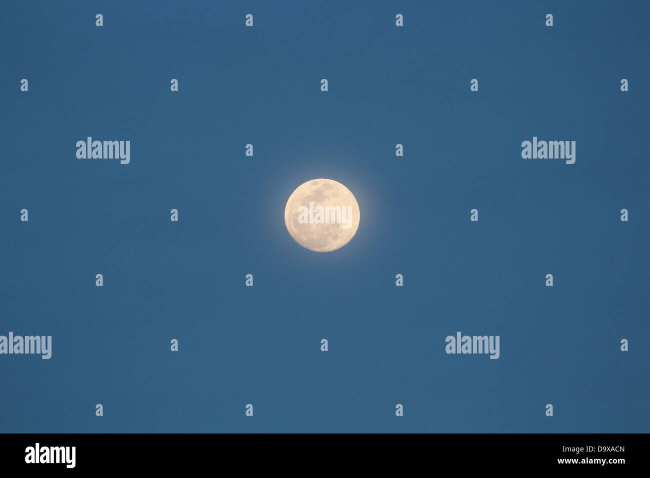 Full moon in clear blue sky Stock Photo