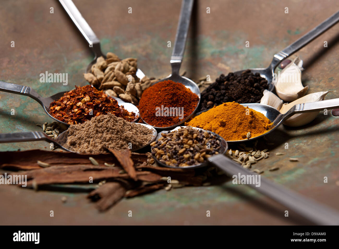 7 Table spoons arranged with different spices in a round Indian dish. - Stock Image