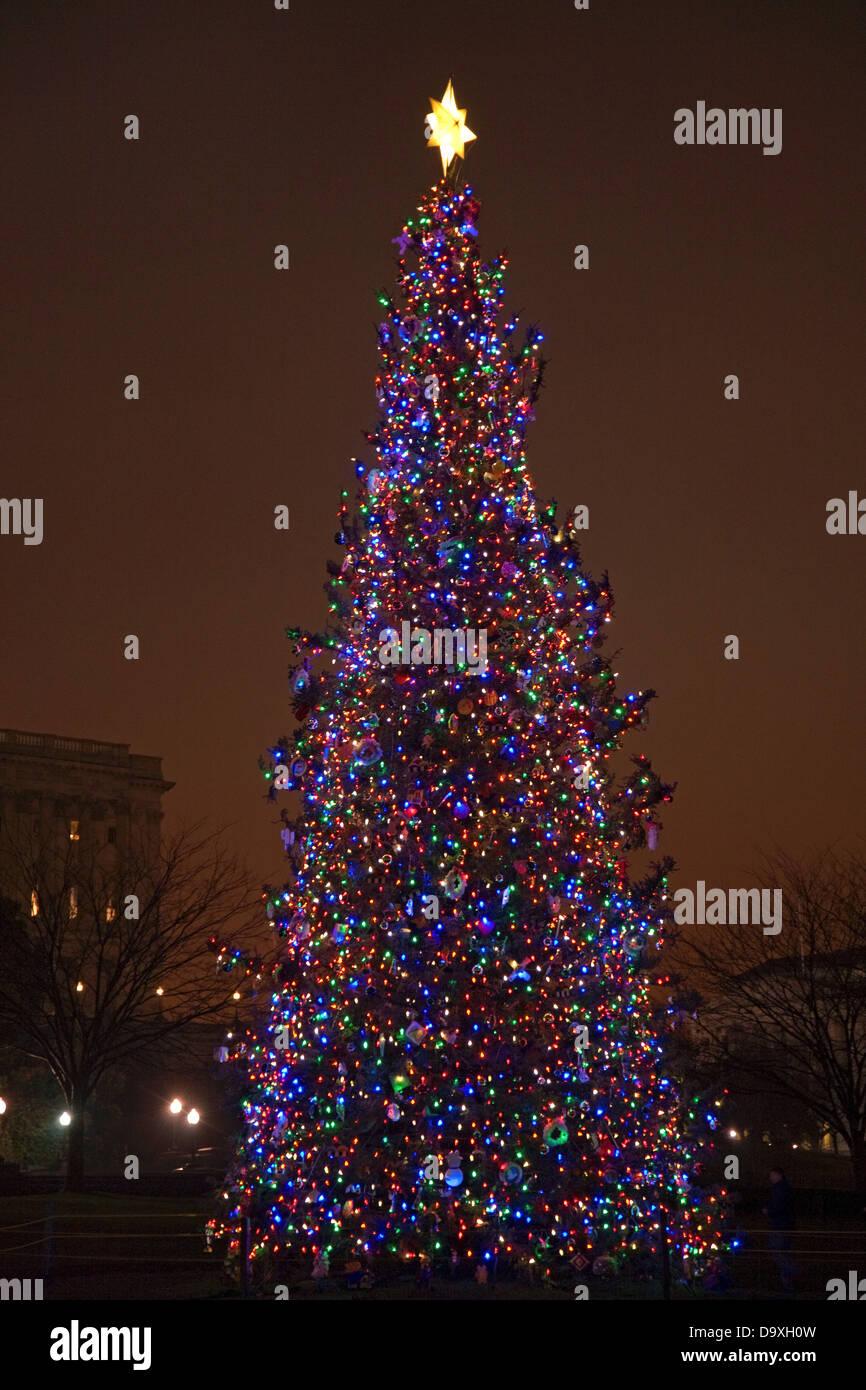 capitol christmas tree washington dc usa stock image - Christmas In Washington