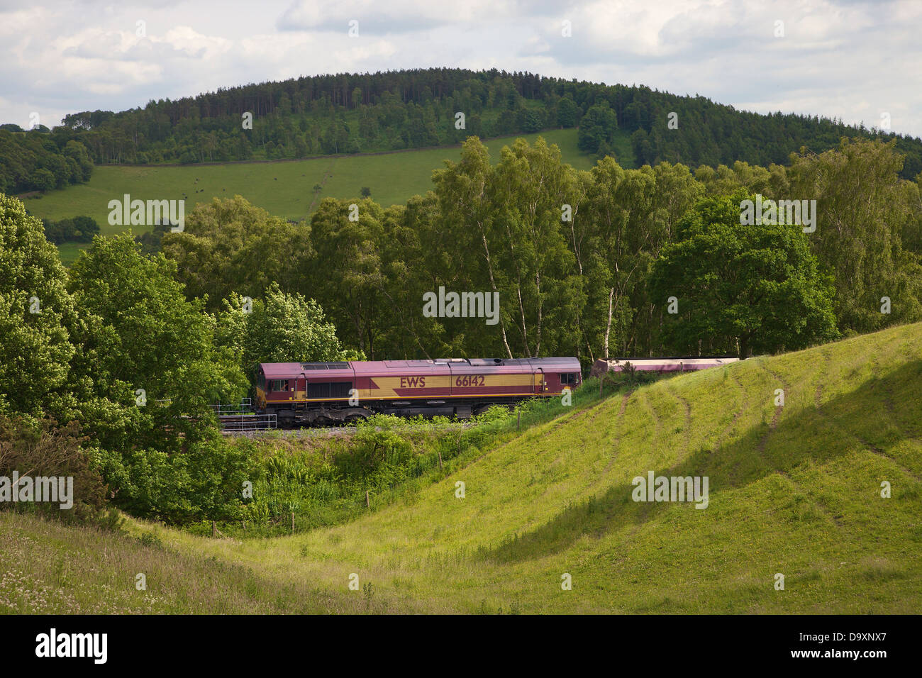 Rolling hills with trees and freight train Settle to Carlisle Line, Eden Valley, Cumbria, England, UK - Stock Image