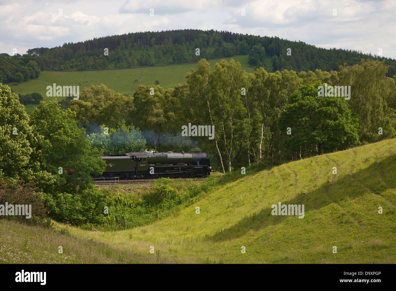 Rolling hill with trees and Steam Train Settle to Carlisle Line, Eden Valley, Cumbria, England, UK - Stock Image