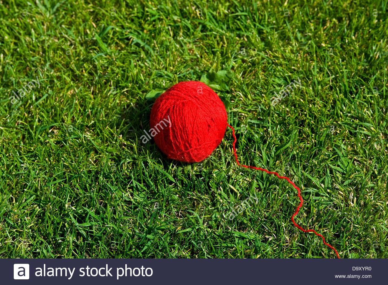 wool ball - Stock Image