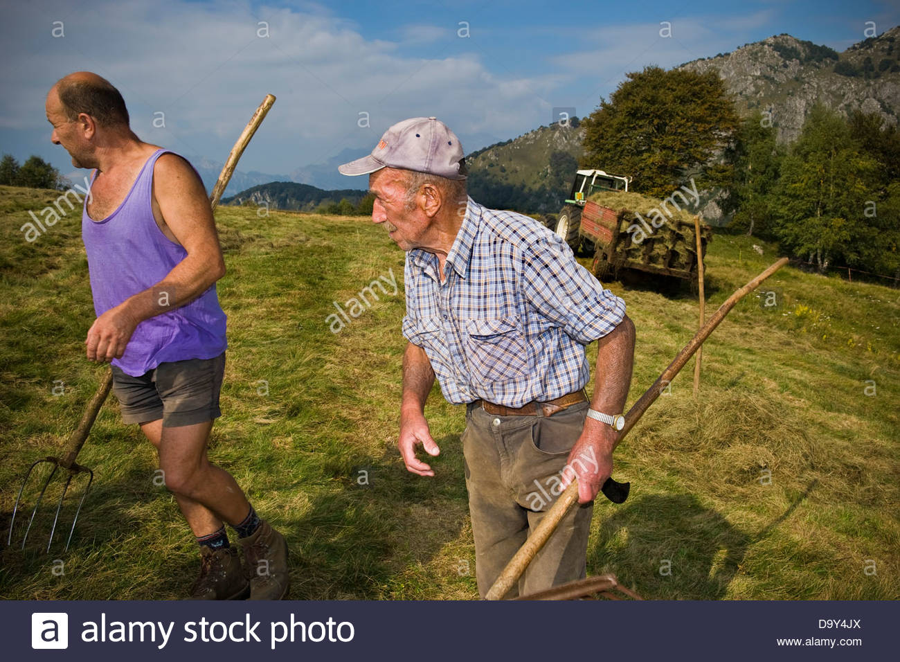 Farmers and cattle breeder,Taleggio valley,Lombardy,Italy - Stock Image