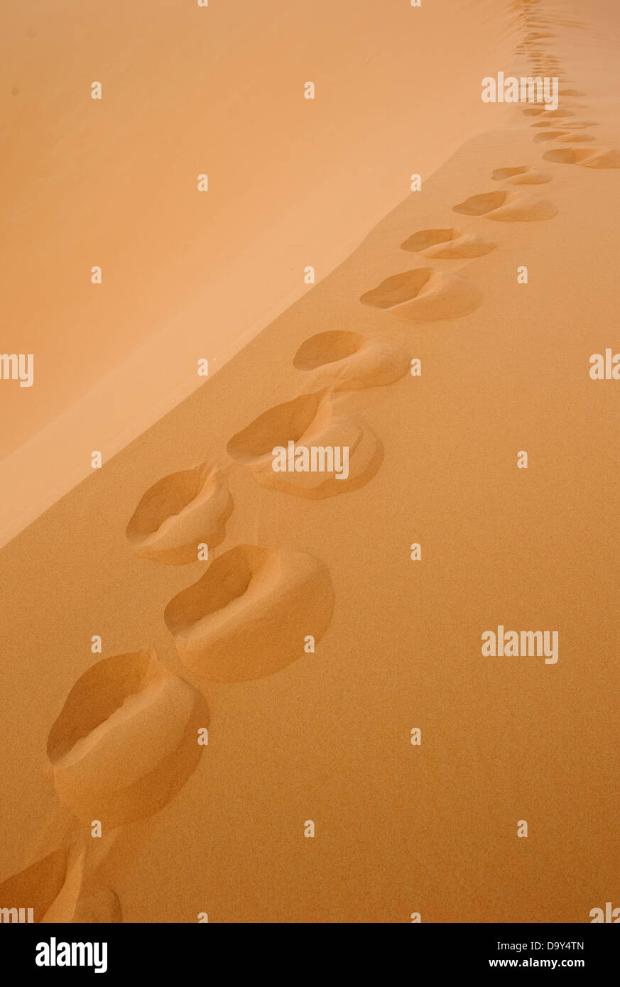 footprints in sand deseret - Stock Image