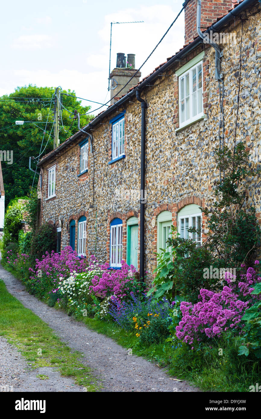 Row of flint faced faced cottages with red valerian - Stock Image