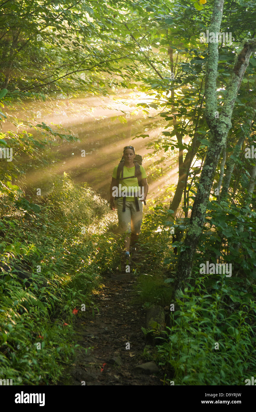 "A woman hiking through ""god rays"" in the Pisgah National Forest, Asheville, North Carolina. Stock Photo"