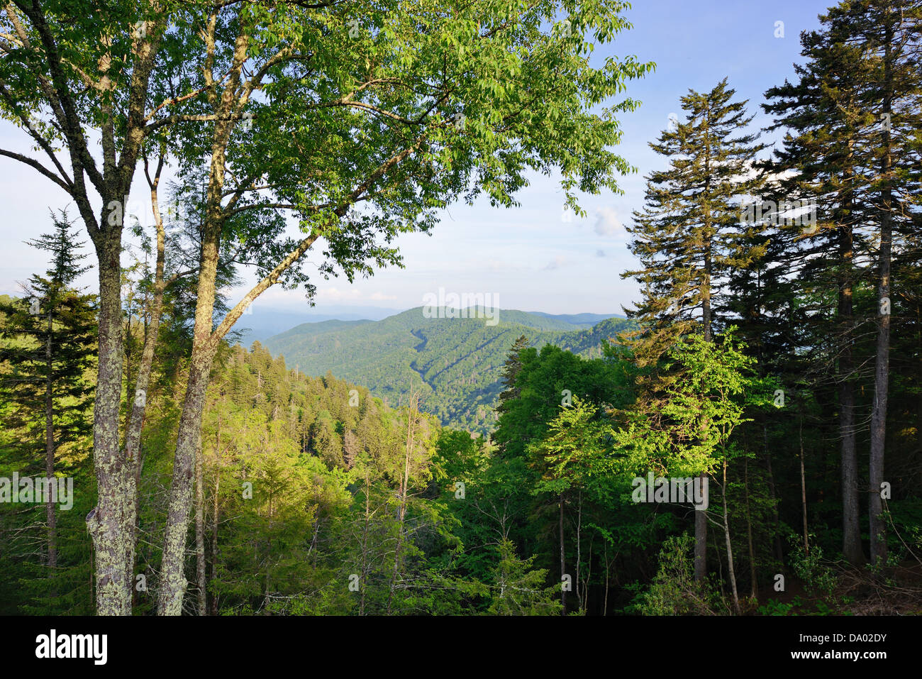 Newfound Gap in the Great Smoky Mountains. - Stock Image