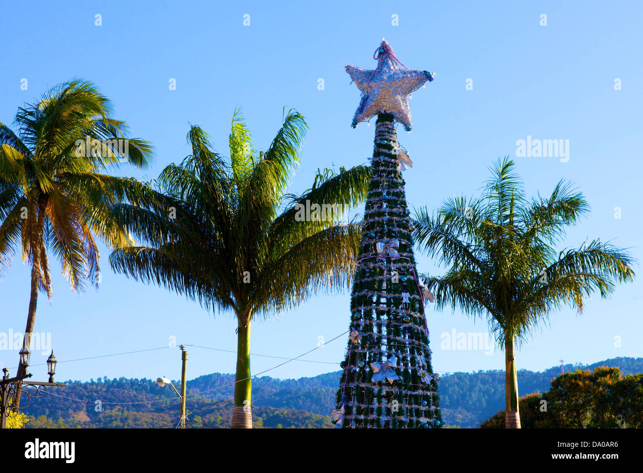 an artificial christmas tree with a large silver star on top between three palm trees - Christmas Palm Tree Pictures