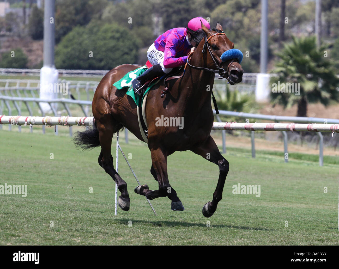 Inglewood, CA, USA. 29th June, 2013. Obviously with Joe Talamo aboard wins the G1 ''Win and Your Win'' - Stock Image