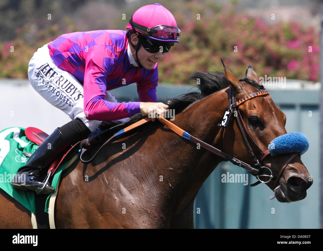 Inglewood, CA, USA. 29th June, 2013. Obviously with Joe Talamo aboard wins the G1 ''Win and Your Win'' Shoemaker Stock Photo