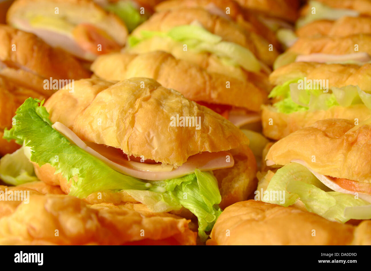 French croissant sandwich - Stock Image