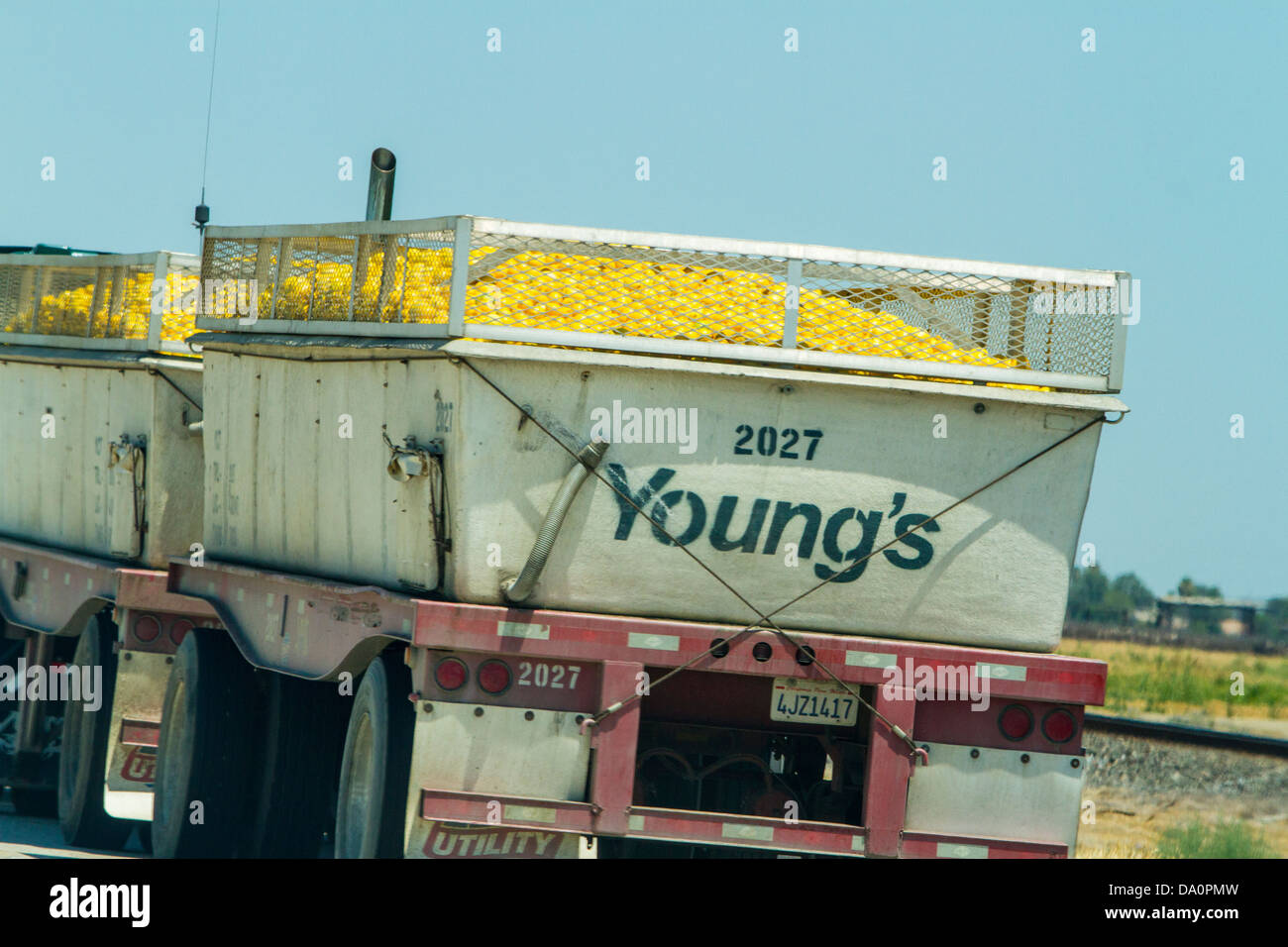 A Truck Load Of Lemons On Californias Highway 99 In The Central Valley