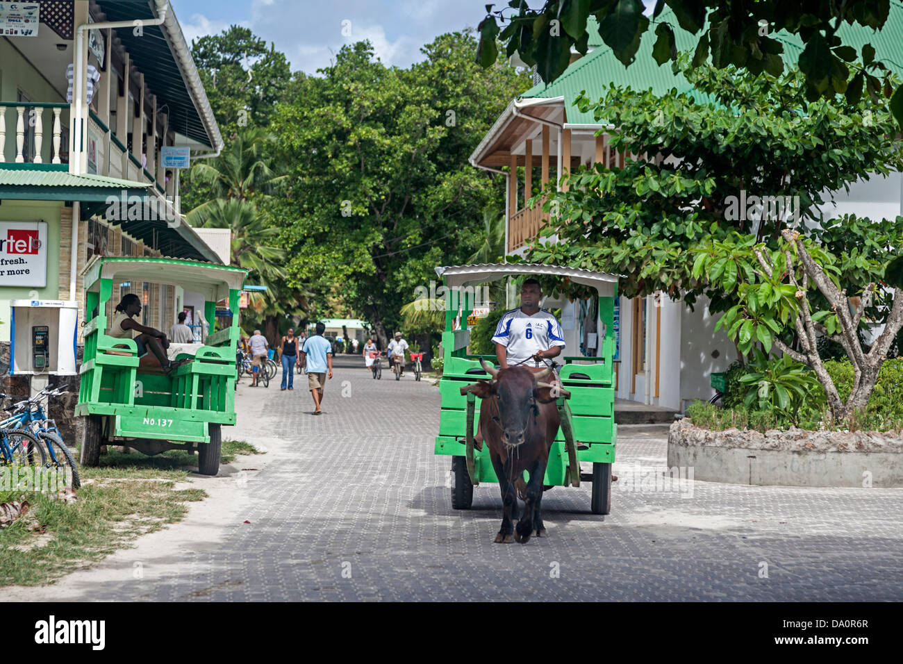 Oxcart taxi on the main street of La Passe ,La Digue, Seychelles, Indian Ocean, Africa - Stock Image