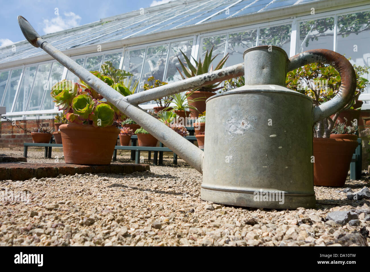 A galvanized watering can sat in front of some plants and greenhouses taken at a low wide angle to make it the dominant - Stock Image
