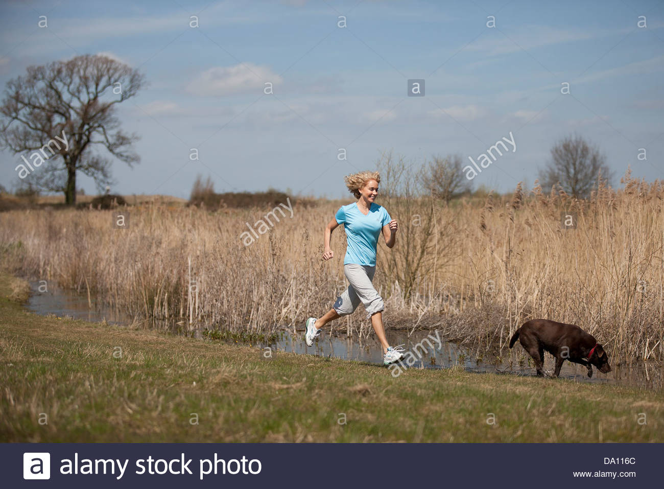 A mature woman running in the countryside with her dog - Stock Image