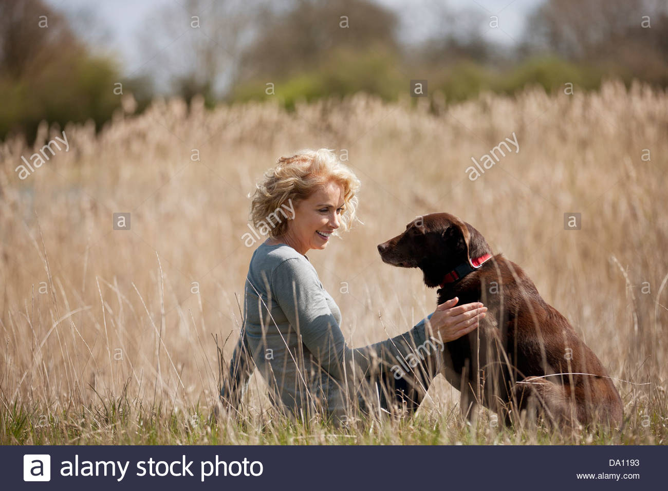 A mature woman sitting on the grass stroking her dog - Stock Image