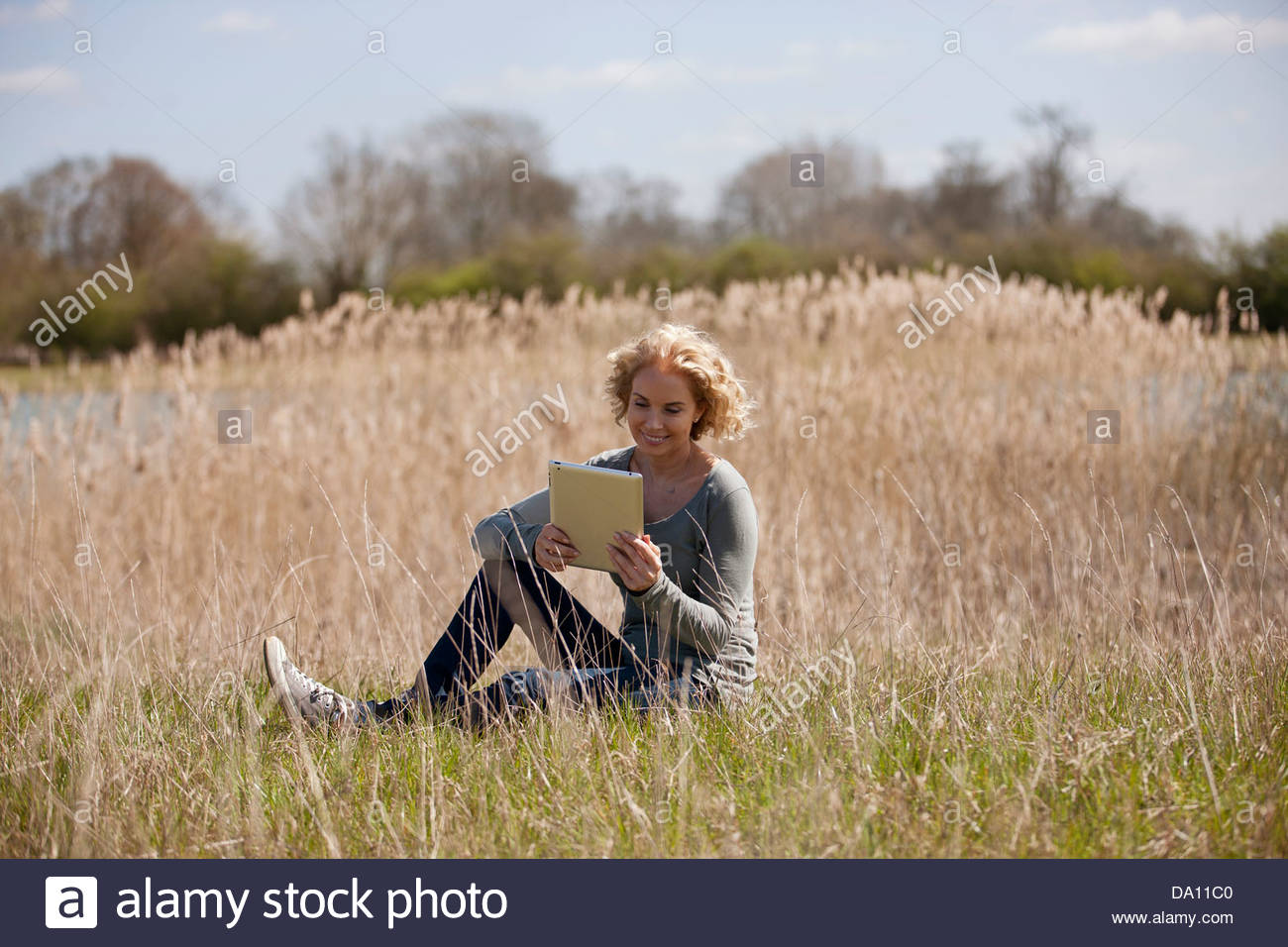 A mature woman sitting in long grass, looking at a digital tablet - Stock Image