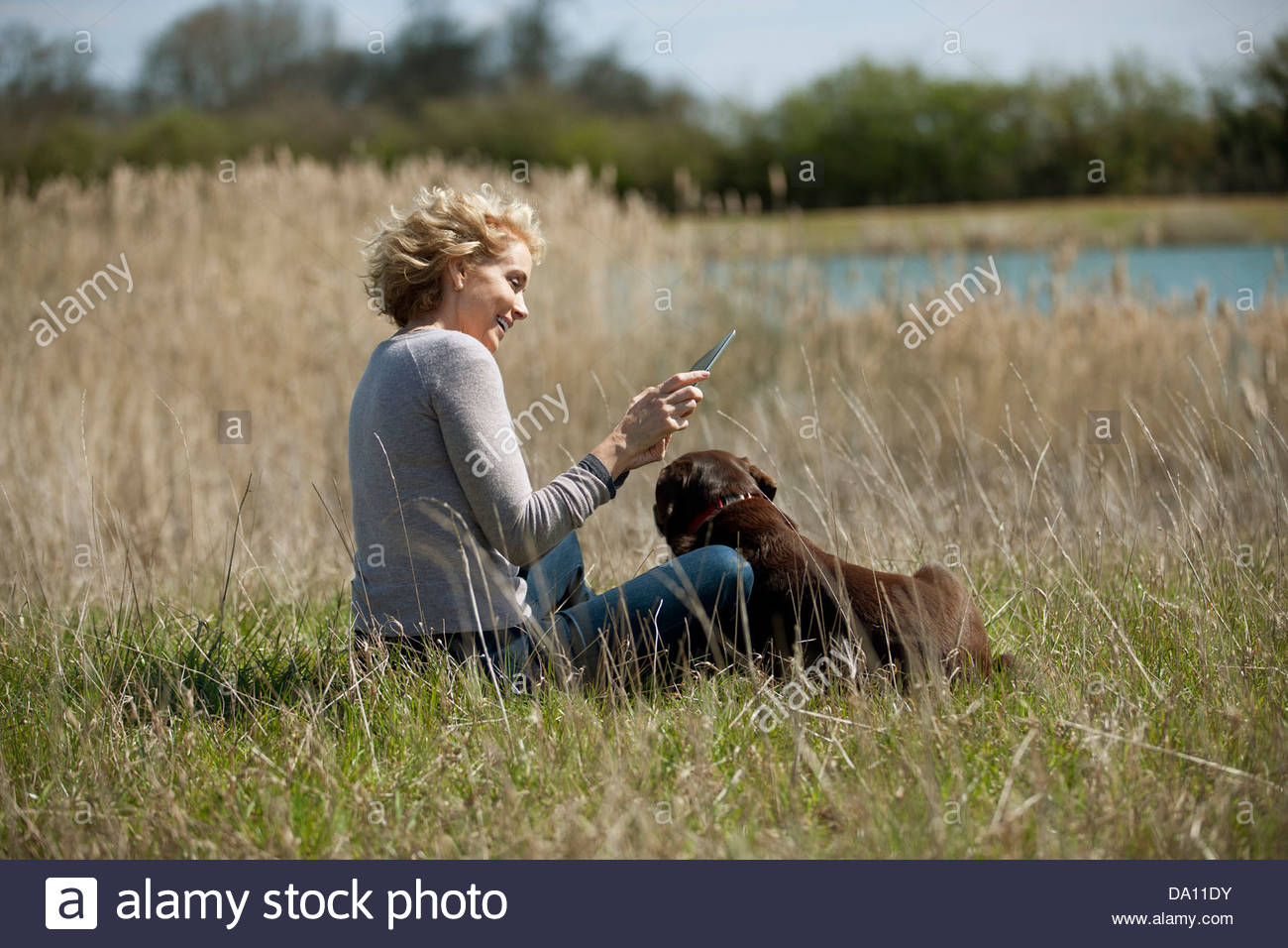A mature woman sitting in long grass with her dog, looking at a digital tablet - Stock Image
