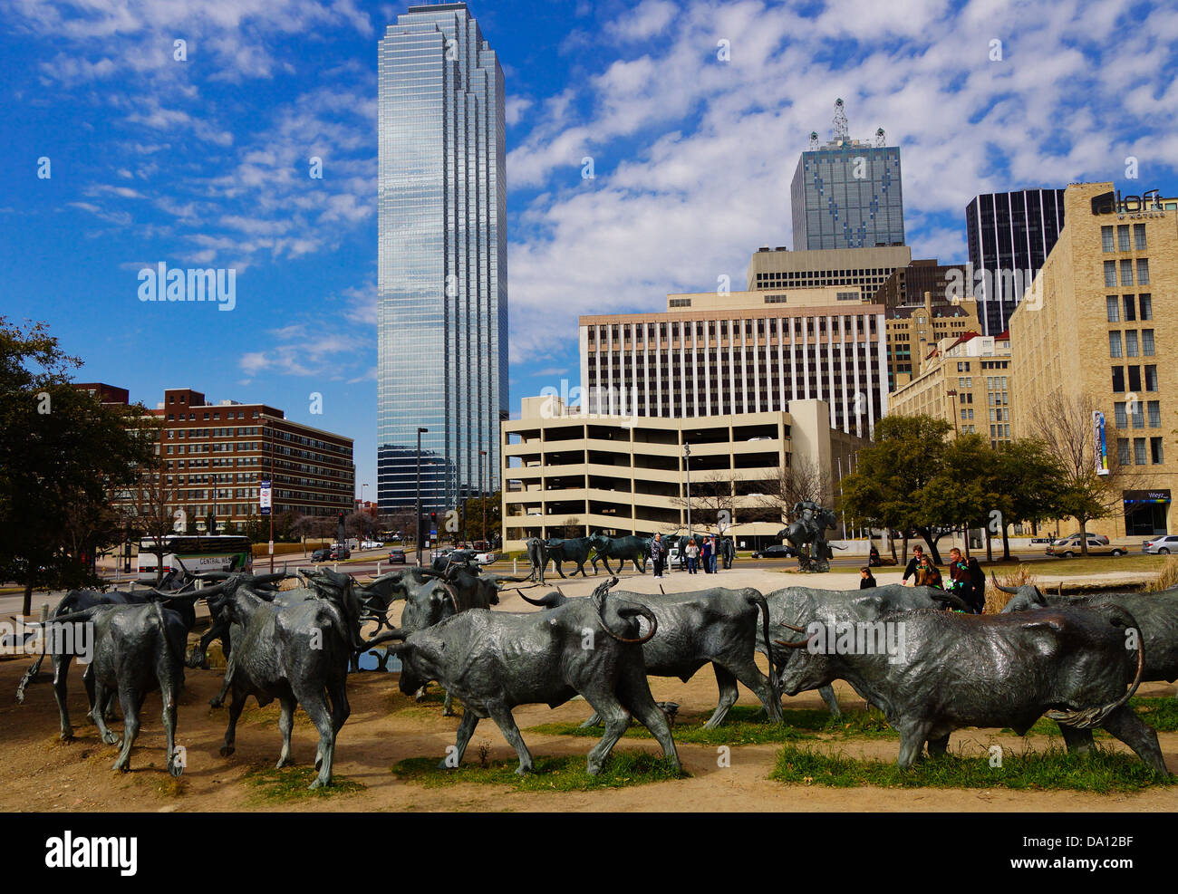 Pioneer Plaza Cattle Drive in Dallas Texas - Stock Image