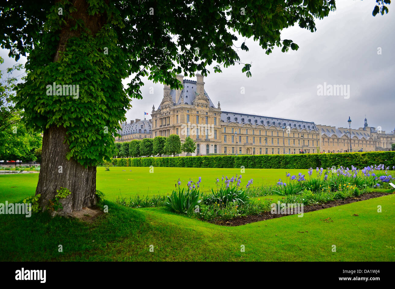 Louvre, Paris, exterior view from Tuileries gardens with cloudy sky and tree Stock Photo