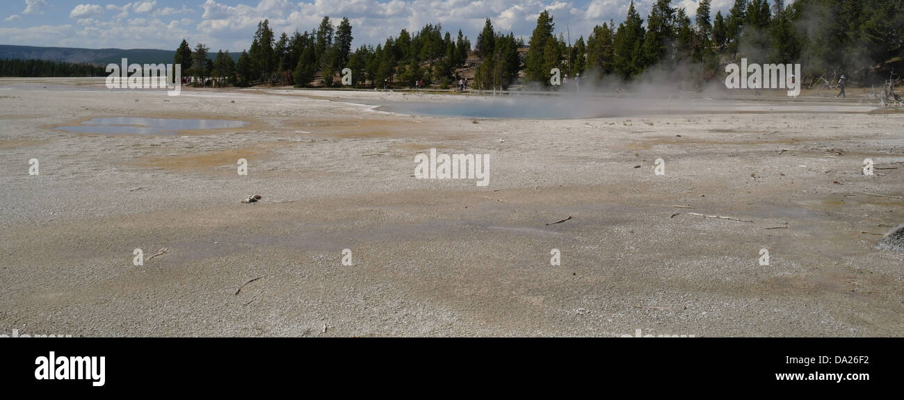Sunny view across broad grey sinter plain to steaming Celestine Pool, trees, boardwalk tourists, Lower Geyser Basin, - Stock Image