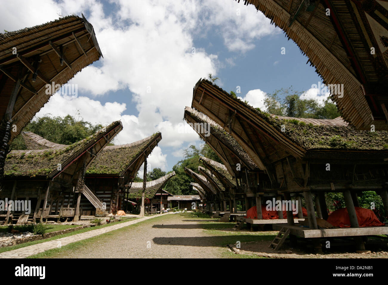 Traditional Torajan houses (tongkonan) in Kete Kesu vilage, Tona Toraja, Sulawesi, Indonesia - Stock Image