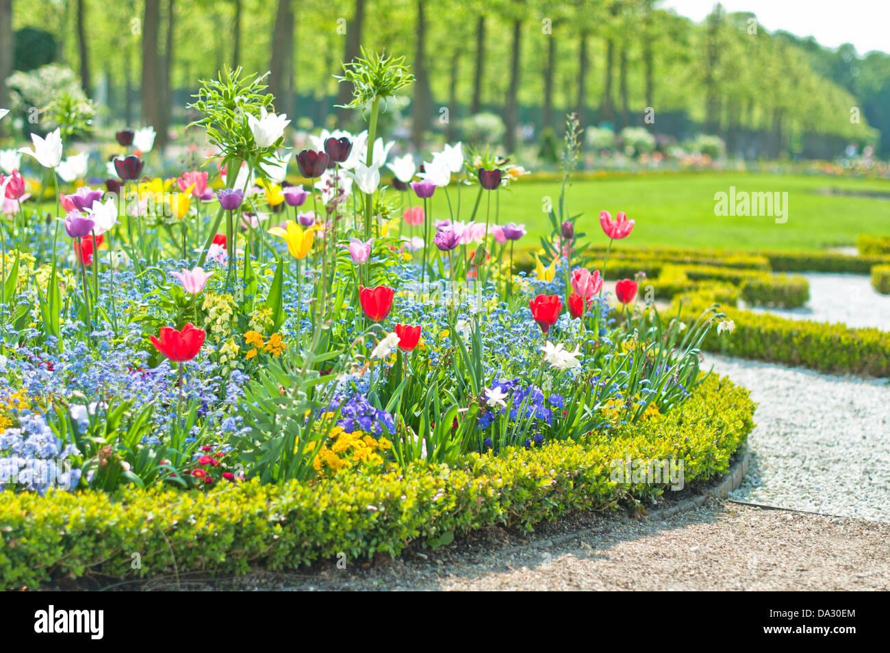 Bett, Außenaufnahme, Dekoration, Wiese, Rasen, Gärtnerisch gestaltet, Natur, Blüte, Blatt, Sommer, Feld, Festlich Stock Photo