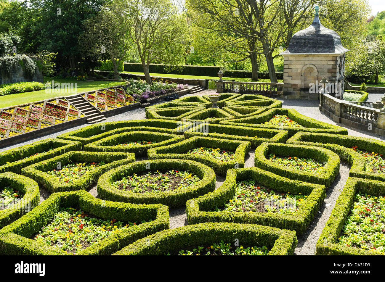 Topiary hedges in the garden of Pollok House, Glasgow, Scotland. - Stock Image