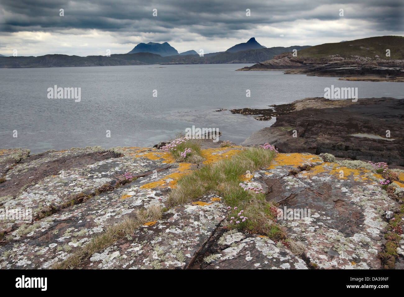 Rocks covered in Thrift and lichen under a dramatic sky on the shoreline of Enard Bay, Sutherland, North West, Scotland, Stock Photo
