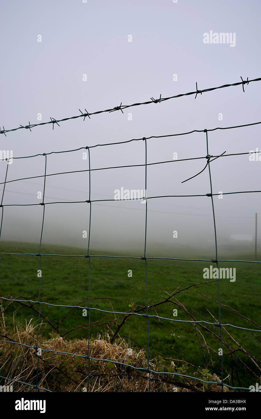 Misty field with barbed wire fence, West Cork, Ireland - Stock Image