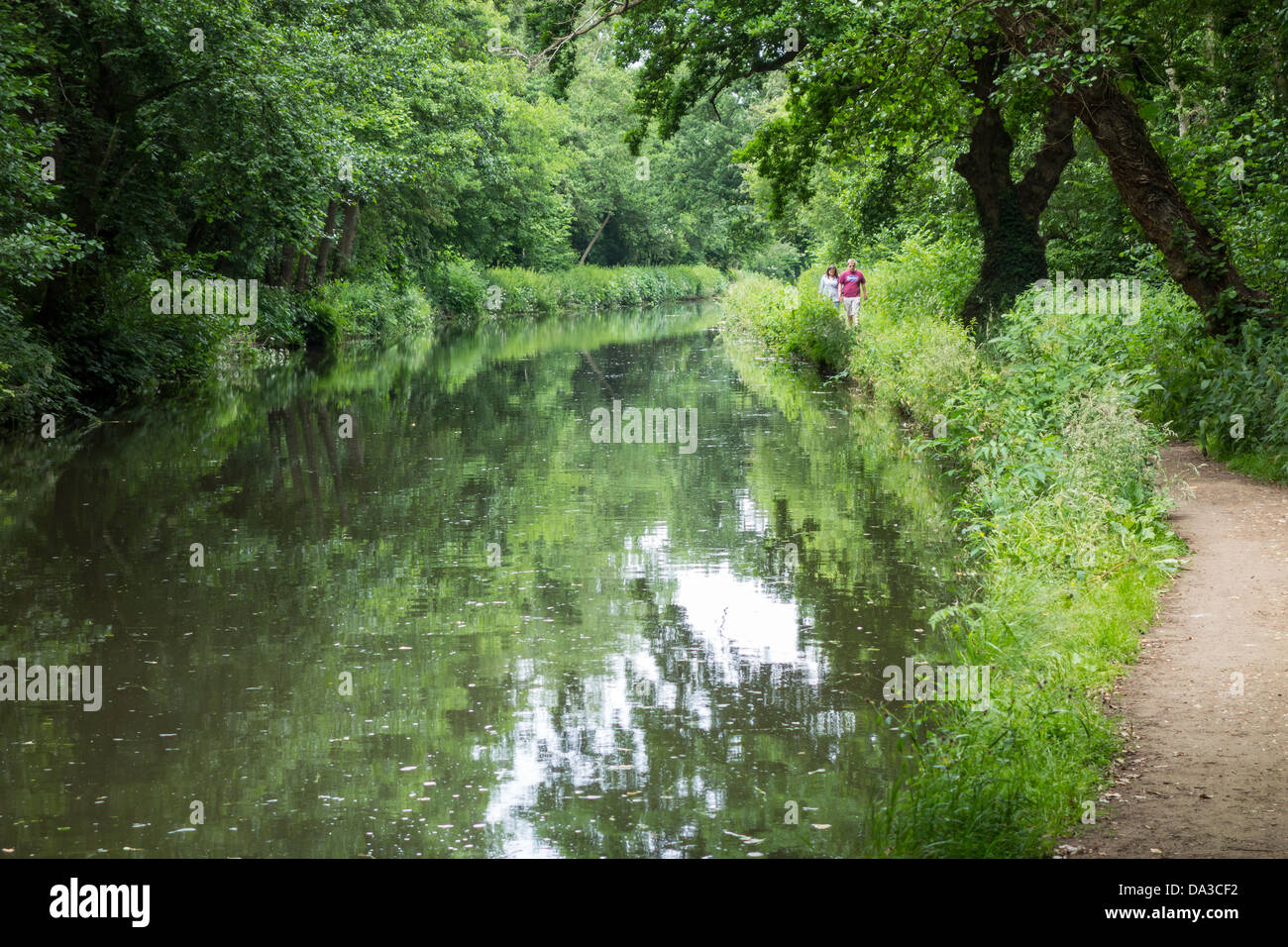 Towpath Walkers on the Wey and Arun Canal at Wisley - Stock Image