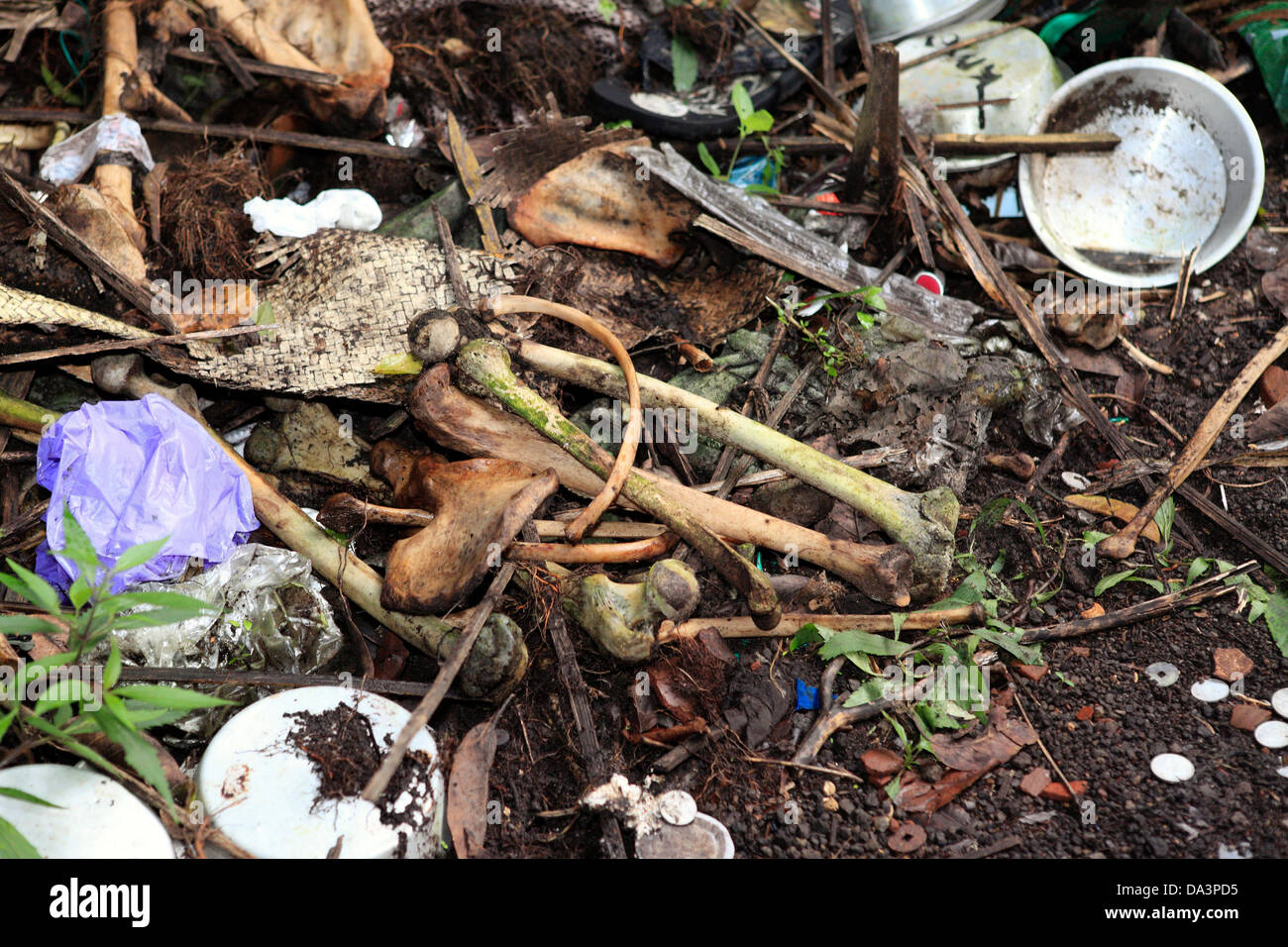 Human bones discarded as rubbish at the cemetery at Trunyan Aga village, Bali. Indonesia - Stock Image
