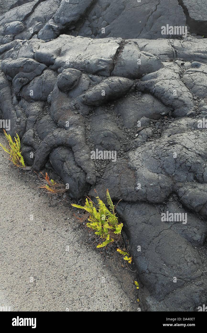 Lava rock from the eruption of Kilauea, Big Island Hawai'i - Stock Image
