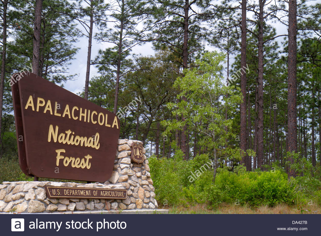 Tallahassee Florida Apalachicola National Forest sign Route 319 - Stock Image