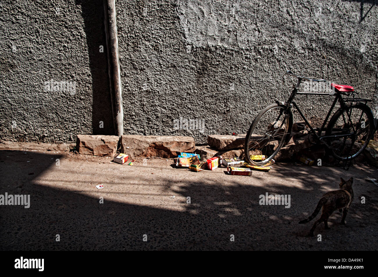 Alley Cat Stock Photos & Alley Cat Stock Images - Page 3 - Alamy
