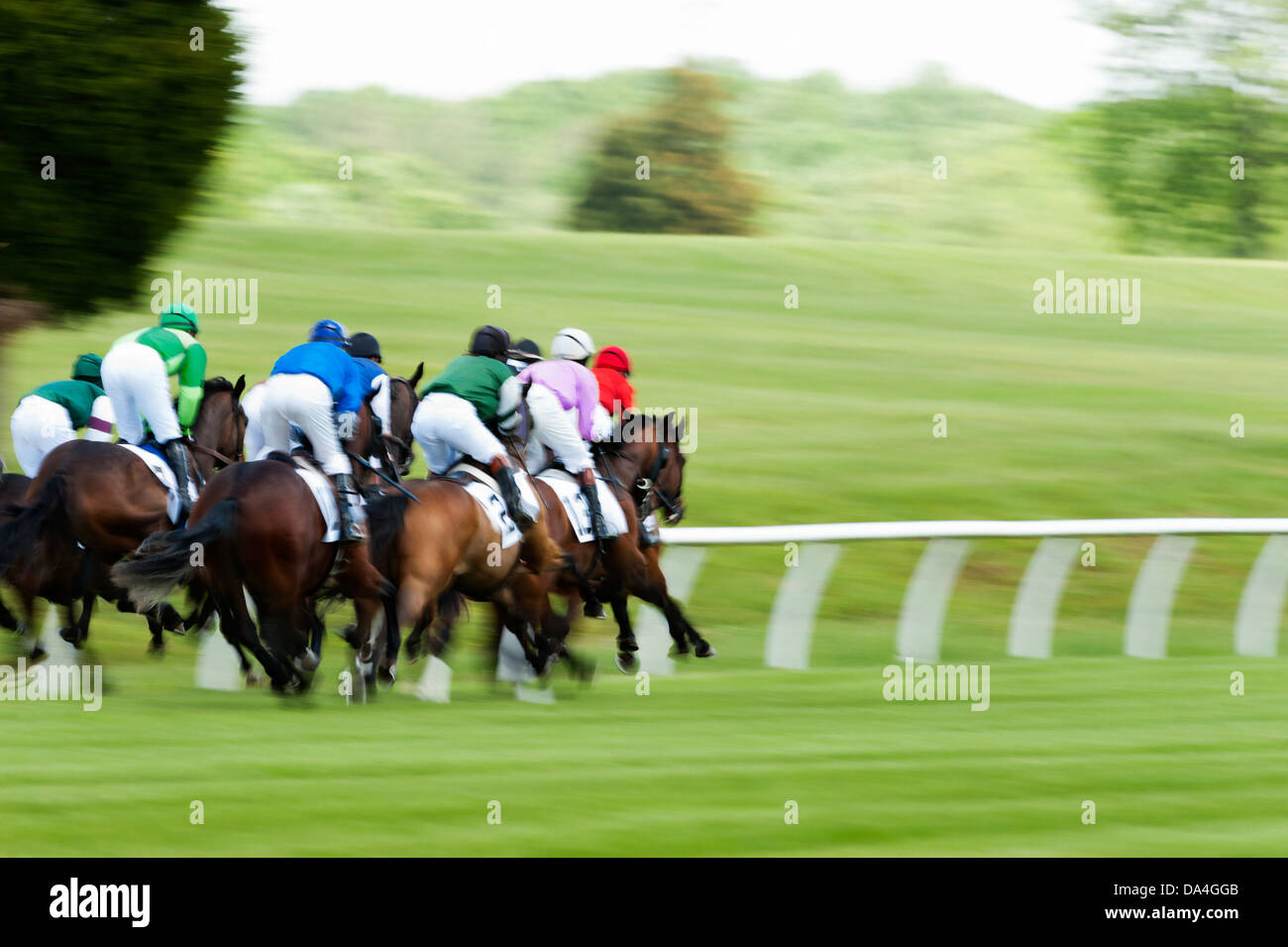 A group of Race horses running during a steeplechase race Stock Photo