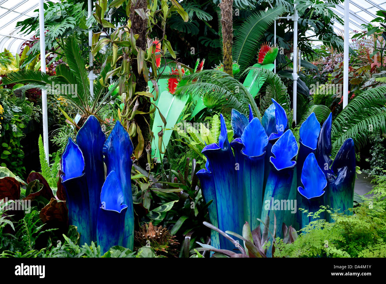 Art glass carnivores plants, in display at the Volunteer Park. Seattle, Washington, USA. - Stock Image